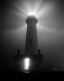 Pigeon point lighthouse. A photo of lighthouse in pigeon point, california at night with main fresnel lens lit in the fog Stock Images