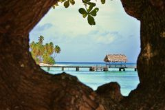 Pigeon Point in Trinidad and Tobago. View Through Tree Royalty Free Stock Images