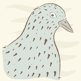 Pigeon portrait. cute birds.  hand drawn,. Cartoon style. suitable for printing on a t-shirt or sweatshirt, shirt design, print bird, sketch bird, Children's Stock Photo