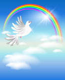 Pigeon and rainbow Stock Images