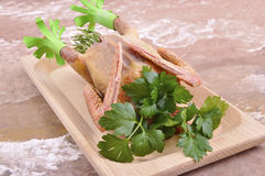 Pigeon with raw ingredients Stock Images