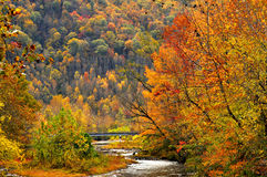 Pigeon River Bridge in fall royalty free stock photography