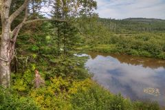 The Pigeon River flows through Grand Portage State Park and Indian Reservation. It is the Border between Ontario and Minnesota royalty free stock photos