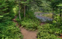The Pigeon River flows through Grand Portage State Park and Indian Reservation. It is the Border between Ontario and Minnesota royalty free stock images