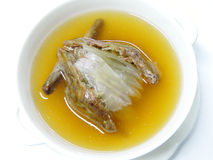 Pigeon Soup Chinese Style Stock Images