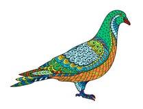 Pigeon stylisé de dessin de colombe Croquis à main levée pour l'anti effort adulte illustration de vecteur