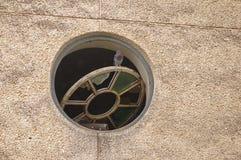 Pigeon sur la fenêtre Image libre de droits