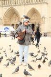 Pigeon woman Stock Photos