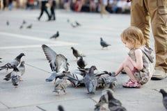 Pigeons alimentants adorables de petite fille Images stock