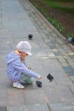 pigeons alimentants de Fille-élève du cours préparatoire Photo libre de droits