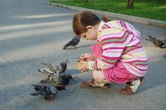 Pigeons alimentants de fille photos libres de droits