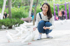 Pigeons alimentants de fille Photo libre de droits
