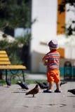 Pigeons alimentants de garçon Photographie stock libre de droits