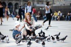 Pigeons alimentants de mère et de descendant Image libre de droits