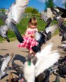 Pigeons alimentants de robe mignonne de petite fille Photographie stock
