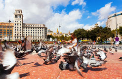Pigeons at Catalonia Square. Barcelona, Spain Stock Photo