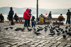Pigeons and children in Ortakoy, Istanbul, Turkey. Istanbul, Turkey - January 31, 2016: People spending time on weekend and children are feeding pigeons in Royalty Free Stock Images