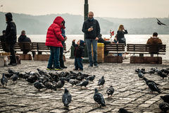 Pigeons and children in Ortakoy, Istanbul, Turkey. Istanbul, Turkey - January 31, 2016: People spending time on weekend and children are feeding pigeons in Stock Photography