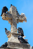 Pigeons on cross Royalty Free Stock Images
