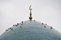 Pigeons on the cupola of the mosque in Bukhara Stock Images