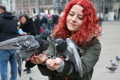 Pigeons. On Dam Square, Amsterdam, Netherlands Royalty Free Stock Photography