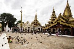 Pigeons dans un temple bouddhiste dans Bagan Photo libre de droits