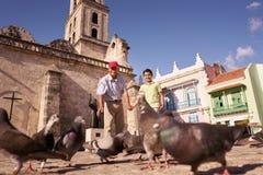 Pigeons de alimentation de grand-parent et de petit-fils avec du pain des vacances Image libre de droits