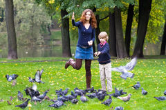 Pigeons de alimentation de mère et de fils en parc Photographie stock