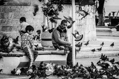 Pigeons de alimentation de personnes Photographie stock libre de droits
