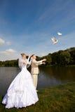 Pigeons de mariage de version de mariée et de marié Images libres de droits