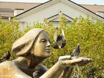 Pigeons de vol Images stock