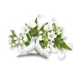 Pigeons et bouquet blancs avec les fleurs blanches Images libres de droits