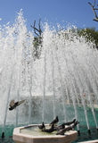 Pigeons are in the fountain Stock Photography