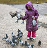 Pigeons and girl Royalty Free Stock Photo