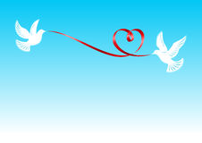 The pigeons holding a ribbon. Pigeons, держашие the red ribbon bent in the form of a heart Stock Photo