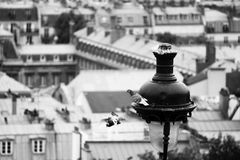 Pigeons and a lantern in Paris. Pigeons and a lantern on the Montmartre hill in Paris Royalty Free Stock Photo
