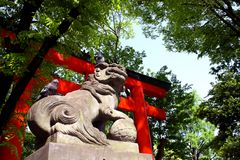 Pigeons on Lion Statue. Two pigeons sitting on lion statue at Shinto shrine entrance gate Royalty Free Stock Photos