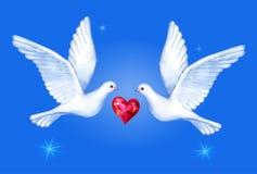 Pigeons montants paires, illustration d'aquarelle de vecteur Photographie stock