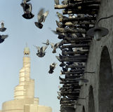 Pigeons and mosque Royalty Free Stock Image