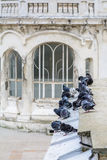 Pigeons on old city building. Numerous black and white pigeons a Stock Photo