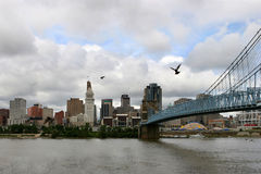 Pigeons over the river. John A. Roebling suspension bridge in Cincinnati, Ohio Royalty Free Stock Image
