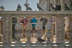 Pigeons perched on the handrail. Marble handrails of a historic building with perched over several pigeons royalty free stock photos