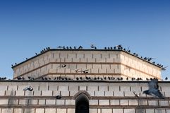 Pigeons on the roof Royalty Free Stock Photos