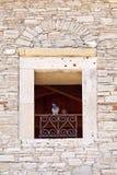 Pigeons on Samos Royalty Free Stock Photos