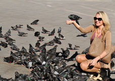 Pigeons in San Marco Square Royalty Free Stock Images