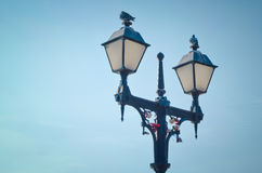 Pigeons sit on the lamppost on which hang the locks. Stock Photos