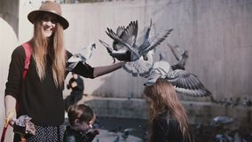 Pigeons sit on woman`s hand and eat. Slow motion. Mother and two kids feed birds on arms. Family fun vacation holiday. Peace and harmony. Pigeon sits on girl`s stock video