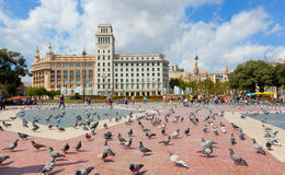 Pigeons on the square in Barcelona. Stock Photography