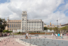 Pigeons on the square in Barcelona Stock Images