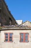 Pigeons sur le toit carrelé photographie stock libre de droits